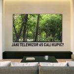 Jaki telewizor 65 cali kupić? (maj 2021)